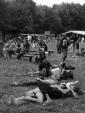 Vue d\'ensemble - éco-festival l\'Arbre qui Marche