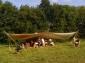 terre-dharmonies-2008-021