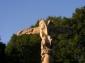 terre-dharmonies-2008-219